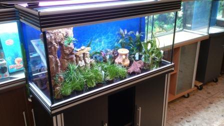 100er Design Aquarium Schwarz Silber