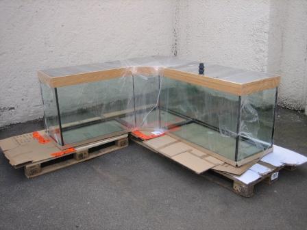 L-aquarium